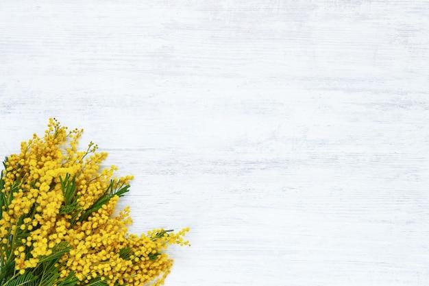 Букет цветов мимозы на белом фоне. копирование пространства, вид сверху.