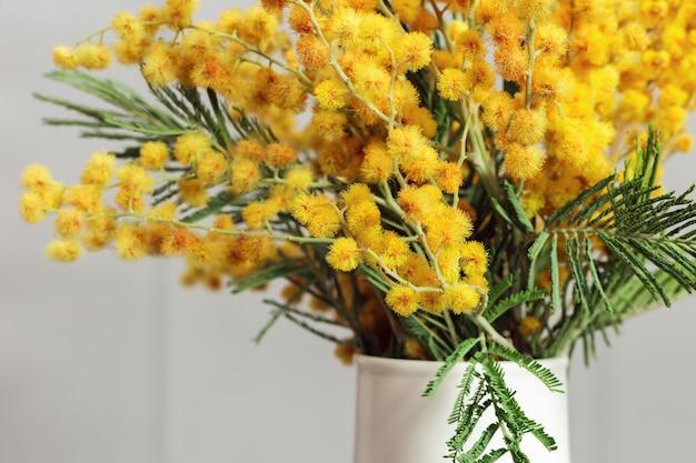 Mimosa spring flowers in vase