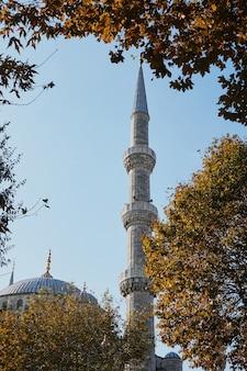 Минарет и купол голубой мечети на фоне голубого неба, стамбул, турция