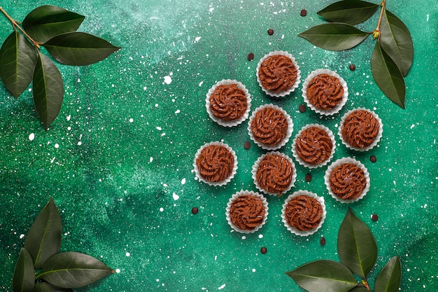 Mini cakes truffles with chocolate drops and cocoa powder, top view