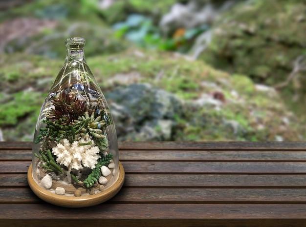 Mini garden deopration in glass vase on wood