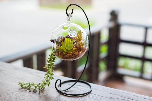 유리 식물 테라리움의 미니 정원