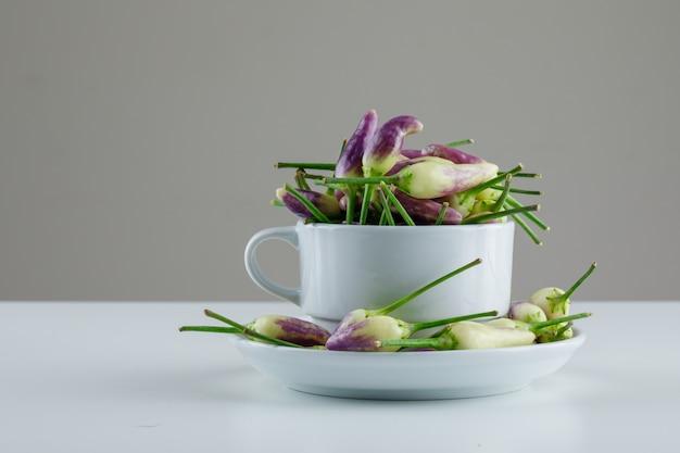 Mini peperoni in tazza e piattino su bianco e grigio.