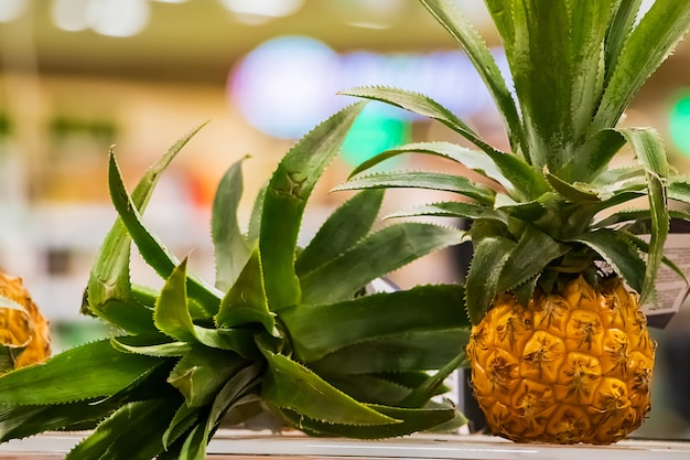 Mini pineapples on a shelf in a supermarket. ripe tropical fruit