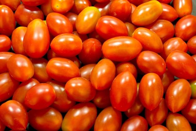 미니 빨간 토마토