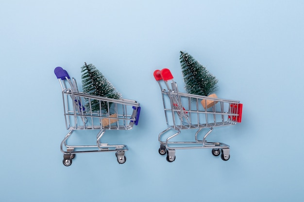 Mini shopping carts and small decorative fir tree on blue background