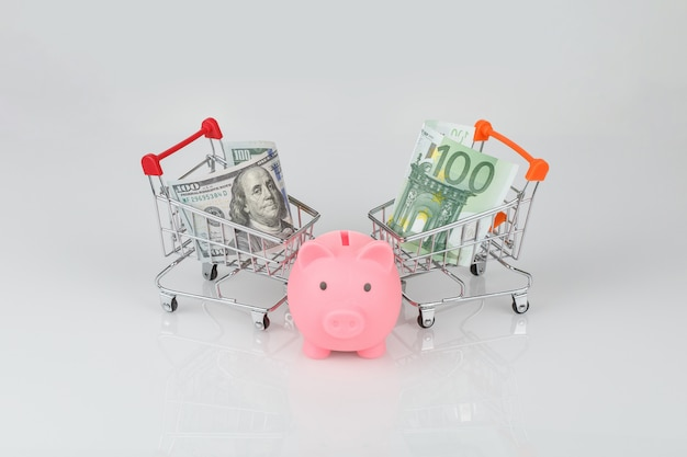 Mini shopping carts with dollar and euro, piggy money box