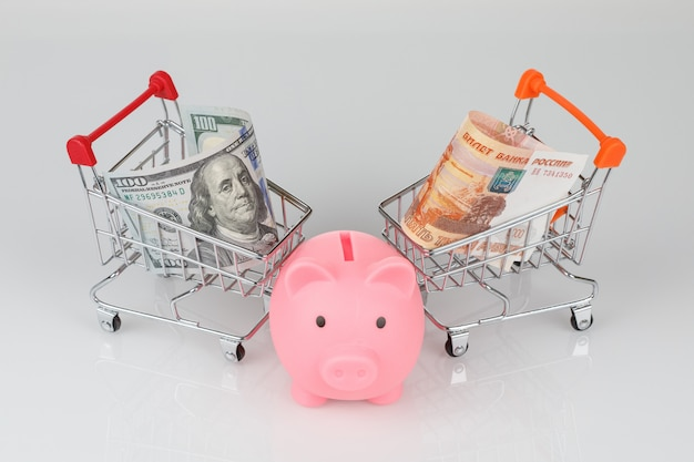 Mini shopping carts with dollar and roubles, piggy money box
