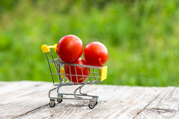Miniature cart with tomatoes