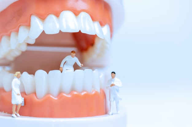 Miniature dentists observing and discussing about human teeth with gums