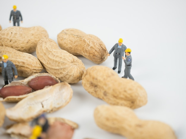 Miniature engineer is working on nuts