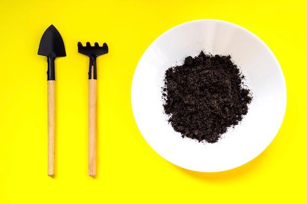 소형 원예 도구, 노란색 배경에 바닥이 있는 접시. 가정 원예, 성장 단계 개념. 식물 발아와 성장.