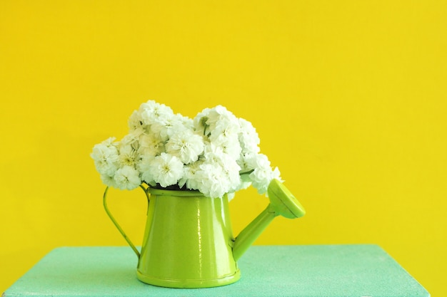 A miniature green watering can with a bouquet of white flowers on a blue wooden box. bright yellow background.