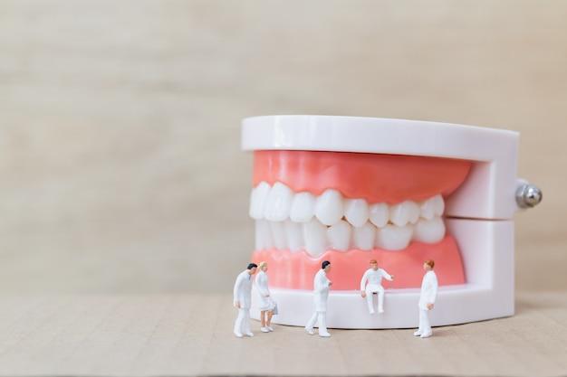 Миниатюрные люди: стоматолог и медсестра наблюдают и обсуждают зубы человека с деснами и эмалью