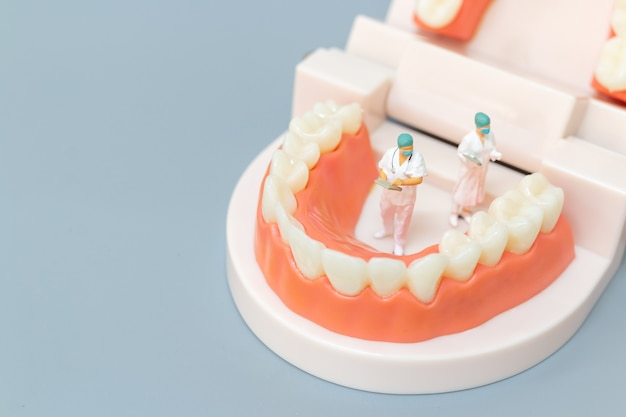 Miniature people : dentist repairing human teeth with gums and enamel , health and medical concept