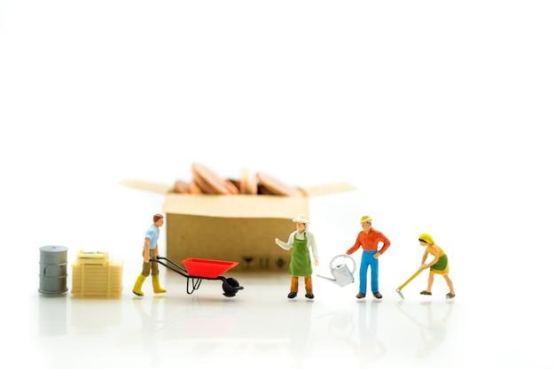 ミニチュア、農業家として使用して、白い背景に紙箱にアクションとコインの庭師
