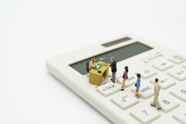 미니어처 사람들 지불 대기열 계산기에서 해당 연도의 연간 소득 (tax).