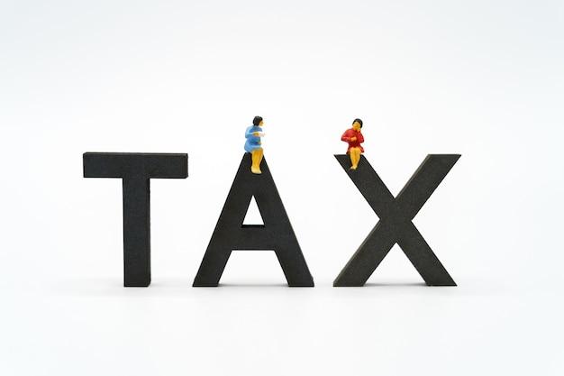 미니어처 사람들 지불 대기열 계산기에서 연간 소득 (tax).