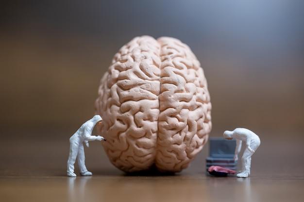 Миниатюрные люди, ученый, наблюдающий и обсуждающий человеческий мозг, концепцию медицинского обслуживания и хирургического врача.