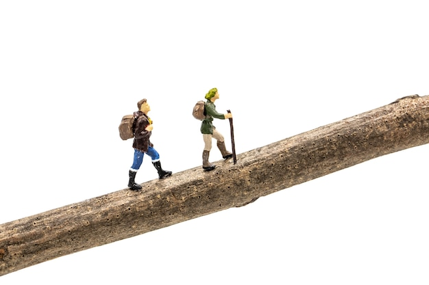 Miniature people travelers trekking on a branch on white background