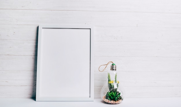 Miniature succulent plant inside glass hang lamp near the white frame against wooden wall
