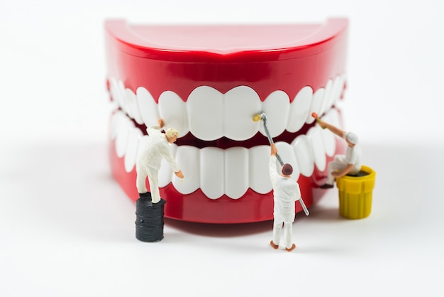 Miniature worker people are cleaning teeth model