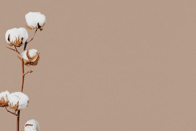 最小限の植物と壁紙