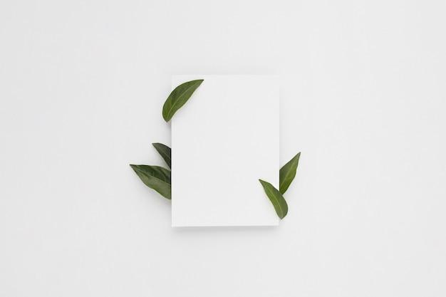 Минимальная композиция с чистым листом бумаги с зелеными листьями
