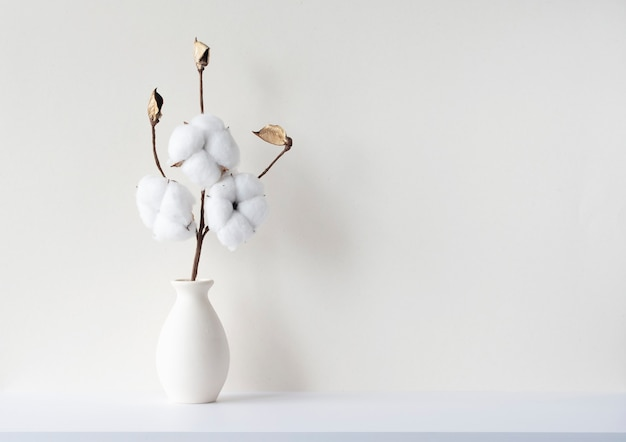 베이지색 벽, 흉내내기, 텍스트 공간이 있는 빈 방의 바사에 말린 면 꽃 가지가 있는 최소 구성