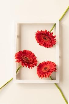 最小限のコンセプト。白いフレームの赤いガーベラの花、フラットレイ