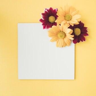 Минимальная цветочная композиция с копией пространства на пастельно-желтом фоне.