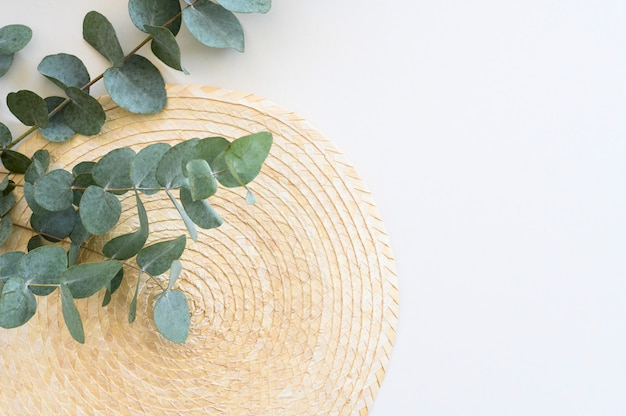 Minimal frame with branches eucalyptus and leaves on white table. top view