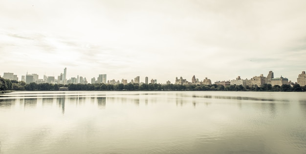 Minimal image of the new york skyline from central park area
