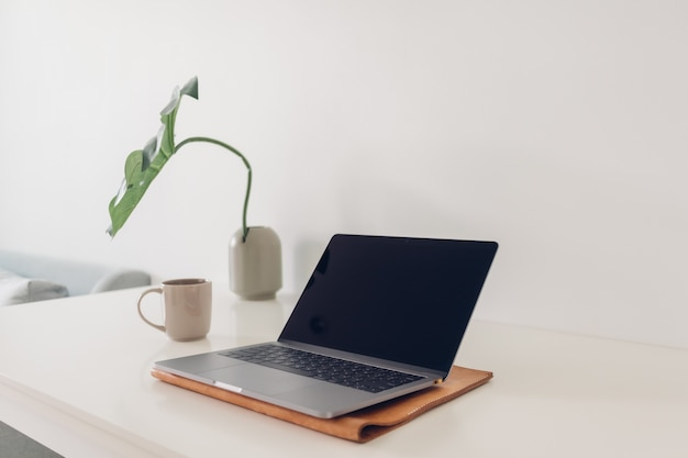 Minimal laptop workspace with plant decoration and coffee.