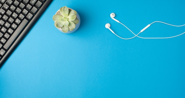 Minimal office desk. flat lay - keyboard, white earphones, succulent on blue background. top view. workplace concept.