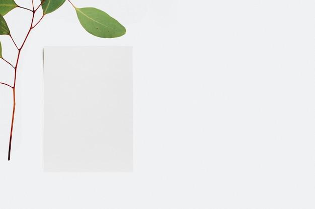 Минимальные бумажные канцелярские товары с ветвью листа