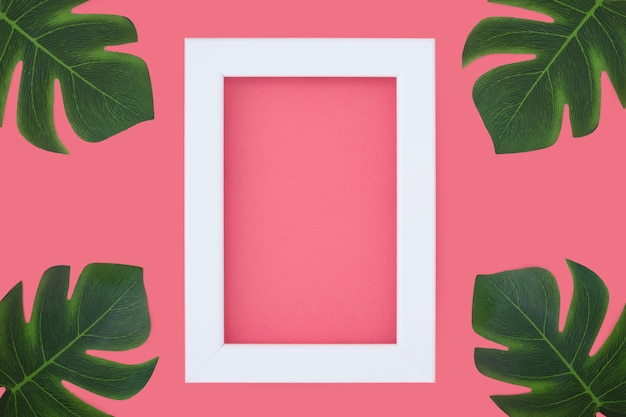 Minimal pink frame with tripical plants