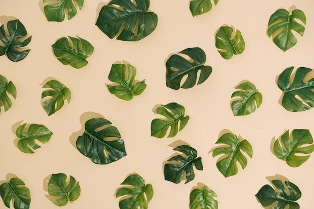 최소한의 햇볕에 쬐인 자연 패턴