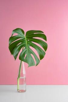 최소한의 열대 잎 구색