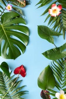 Minimal tropical plant composition