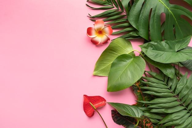 最小限の熱帯植物組成