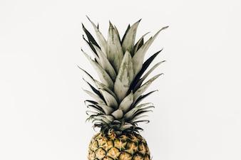 Minimalism pineapple fruit