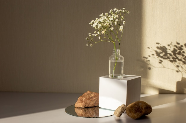 Minimalism still life with a branch of a gypsophila flower standing on a white paper cube and stones