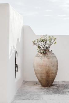 Minimalism vase wall sky background