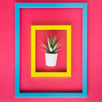 Minimalist arrangement of colorful frames