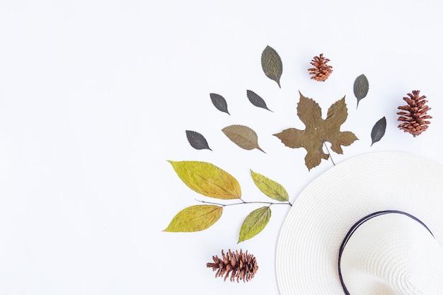 ミニマリストの秋のコンセプト。乾燥した葉、松の花、白い紙の背景に分離された白い帽子