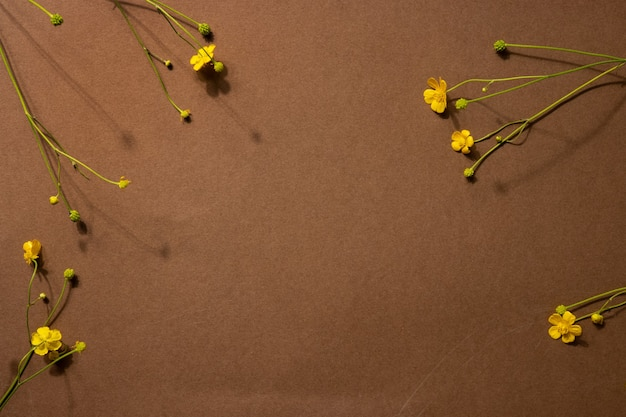 天然素材のミニマリストベージュブラウン静物構成:石と黄色の花、抽象的な現代アートデザインコンセプト側面図 Premium写真