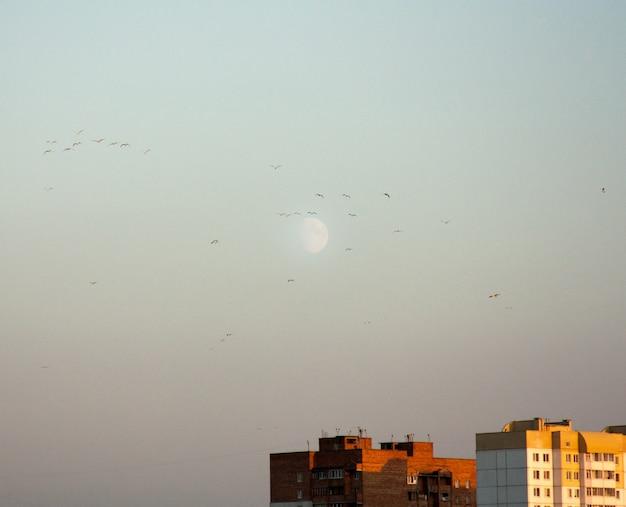 Minimalist cityscape with white moon