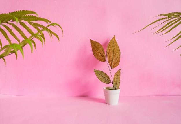 미니멀리즘 개념 아이디어입니다. 분홍색 배경에 흰색 냄비에 마른 잎. 여름 개념