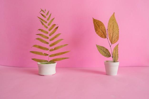 미니멀리즘 개념 아이디어입니다. 분홍색 배경에 흰색 냄비에 마른 잎